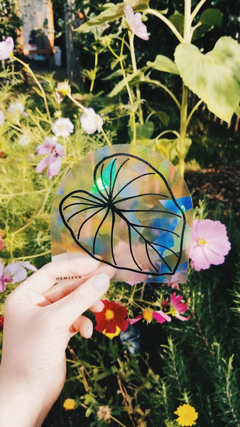Hemleva Sun Catcher Stickers