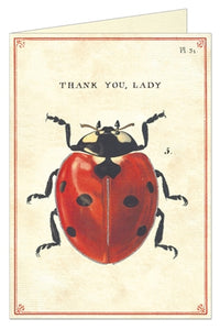 Thank You Lady Bug Card