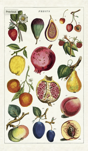 Fruits Tea Towel - Cavallini