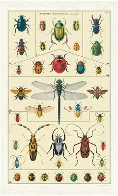 100% cotton tea towel printed with a vintage science chart of insect species