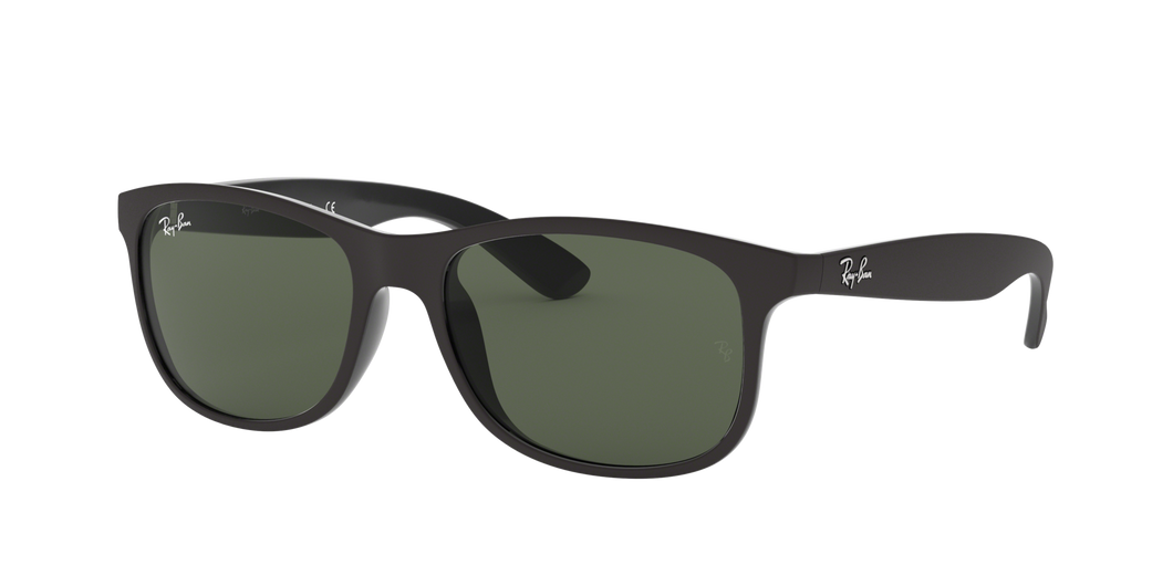 Ray Ban RB4202 Andy