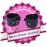 meet-white-rabbit