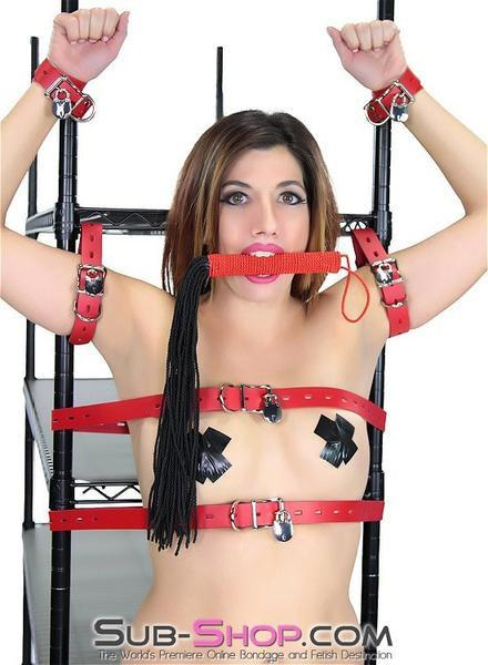 "1439DL      Strike a Cord 19"" Black Cord Strand Red Handle Whip - <b>MEGA Deal</b> - Sale BDSM, Bondage Gear, Adult Toys, Bondage Sex, Orgasm Belt, Male Chastity, Gags. Bondage Slave Collars, Wrist Cuffs, Submissive, Dominant, Master, Mistress, Crossdresser, Sub-Shop Bondage and Fetish Superstore"