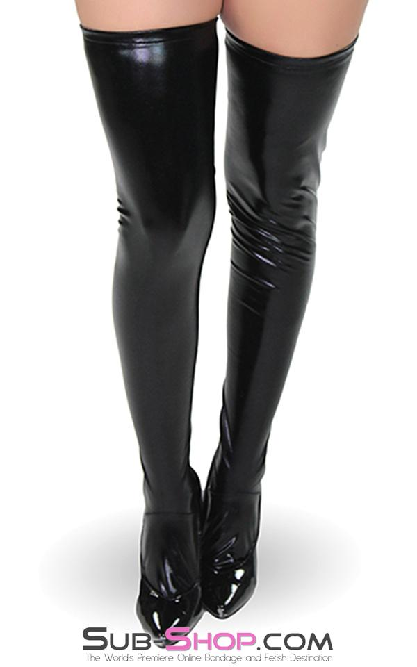 1668DL      Zipper Back Seam Wet Look Stockings - Sale BDSM, Bondage Gear, Adult Toys, Bondage Sex, Orgasm Belt, Male Chastity, Gags. Bondage Slave Collars, Wrist Cuffs, Submissive, Dominant, Master, Mistress, Crossdresser, Sub-Shop Bondage and Fetish Superstore