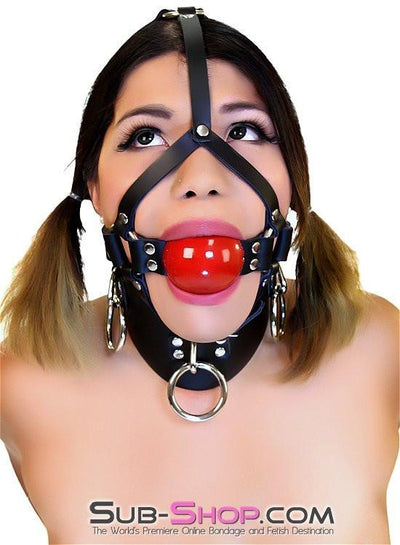 "450A    2"" Leather Ball Gag Trainer, Candy Apple Red Ball - Sale BDSM, Bondage Gear, Adult Toys, Bondage Sex, Orgasm Belt, Male Chastity, Gags. Bondage Slave Collars, Wrist Cuffs, Submissive, Dominant, Master, Mistress, Crossdresser, Sub-Shop Bondage and Fetish Superstore"