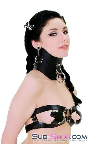 553A      Dungeon Slave Black Leather Extreme Posture Collar - Sub-Shop.comCollar - 2