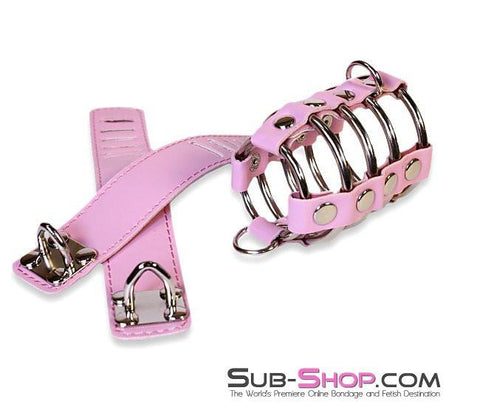 6998HS      Feminizing Pink Cock Cage with Ball Spreader Set - Sub-Shop.comCock Cage - 3