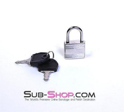 758A  Pair of Small Silver Bondage Gear Padlocks - Sale BDSM, Bondage Gear, Adult Toys, Bondage Sex, Orgasm Belt, Male Chastity, Gags. Bondage Slave Collars, Wrist Cuffs, Submissive, Dominant, Master, Mistress, Crossdresser, Sub-Shop Bondage and Fetish Superstore