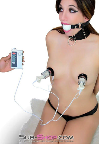 6919R      Sub-Shock Electro-Stimulation Power Box - Sale BDSM, Bondage Gear, Adult Toys, Bondage Sex, Orgasm Belt, Male Chastity, Gags. Bondage Slave Collars, Wrist Cuffs, Submissive, Dominant, Master, Mistress, Crossdresser, Sub-Shop Bondage and Fetish Superstore