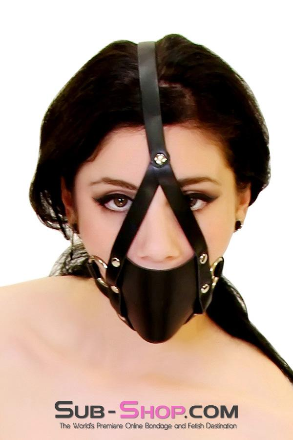 8830HS      Wrap Around Panel Ball Gag Trainer - <b>MEGA Deal</b> - Sale BDSM, Bondage Gear, Adult Toys, Bondage Sex, Orgasm Belt, Male Chastity, Gags. Bondage Slave Collars, Wrist Cuffs, Submissive, Dominant, Master, Mistress, Crossdresser, Sub-Shop Bondage and Fetish Superstore