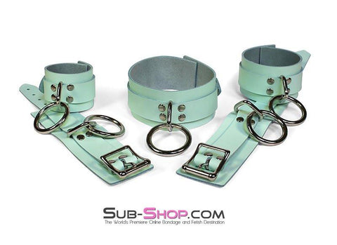 988A     I Like It Rough Retro Mint Green Leather Bondage Collar - Sub-Shop Bondage and Fetish Superstore
