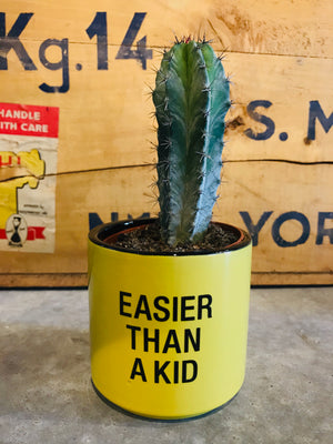 Easier Than a Kid Small Planter
