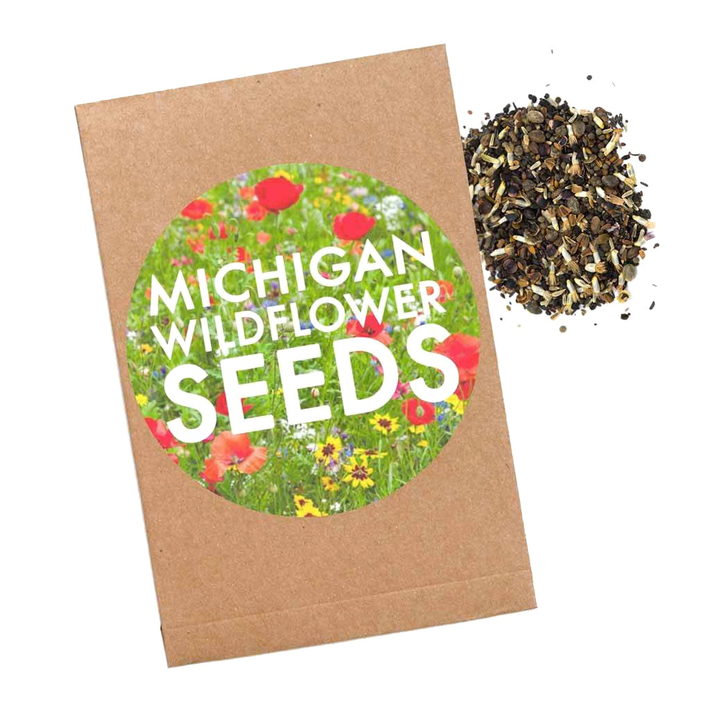 Michigan Wildflower Seed Packet