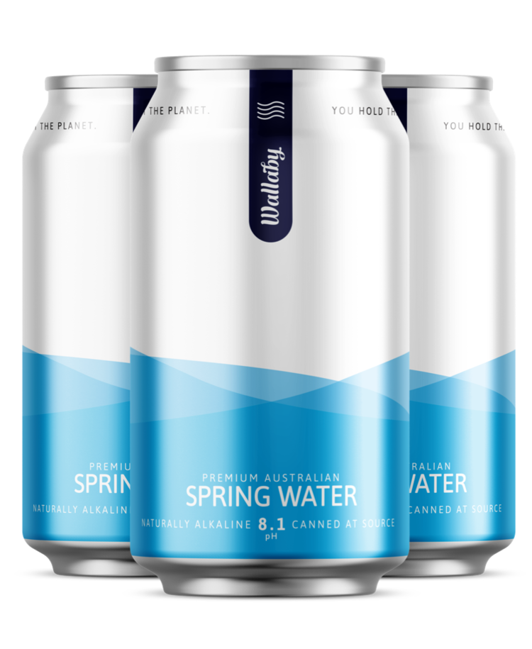 NATURALLY ALKALINE Wallaby Spring WATER Cans 24 x 375ml