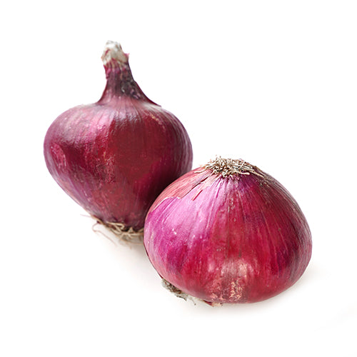 Organic Red Onion - each