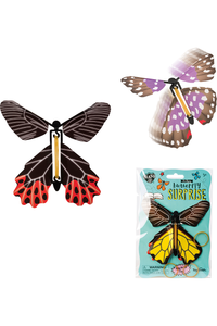 BUTTERFLY SURPRISE (ASSORTED COLOR)