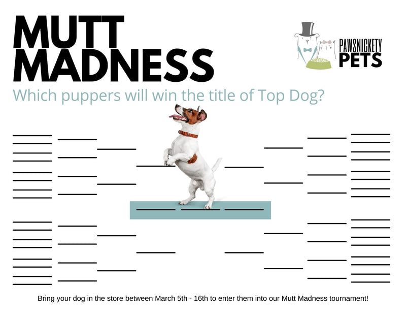 Announcing the Mutt Madness Contest