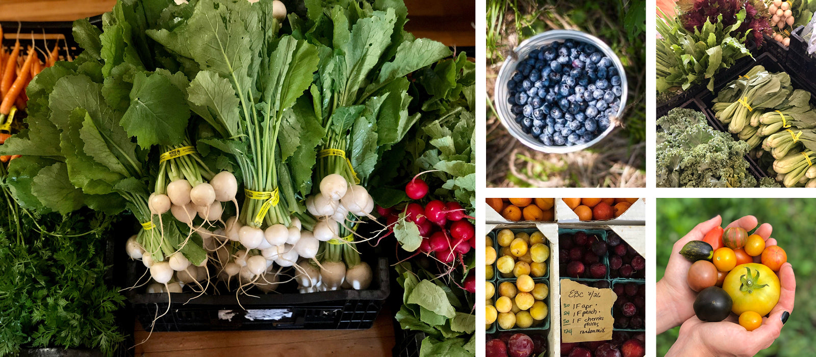 local farms | Early Bird Cookery | Farm-to-Table MEAL DELIVERY, CATERING