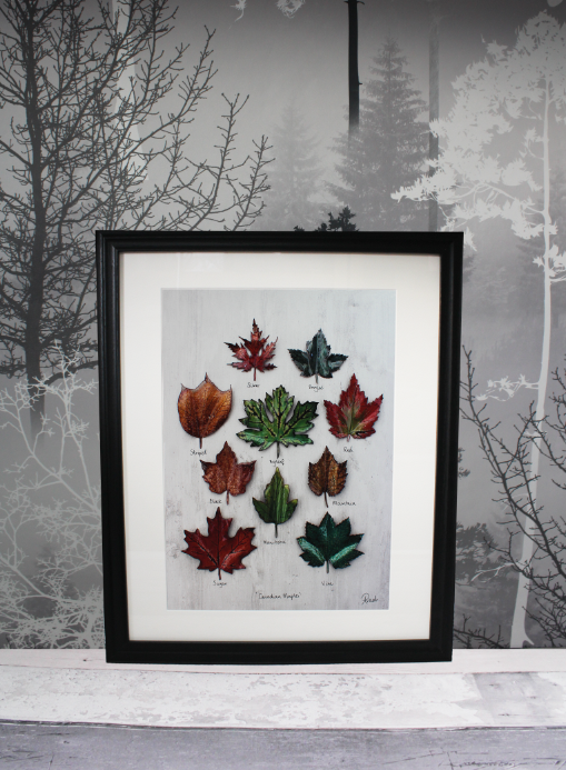 Canadian Maple Giclee A4