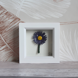 Purple Daisy - Mini Frame