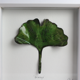 Ginkgo - Medium Frame