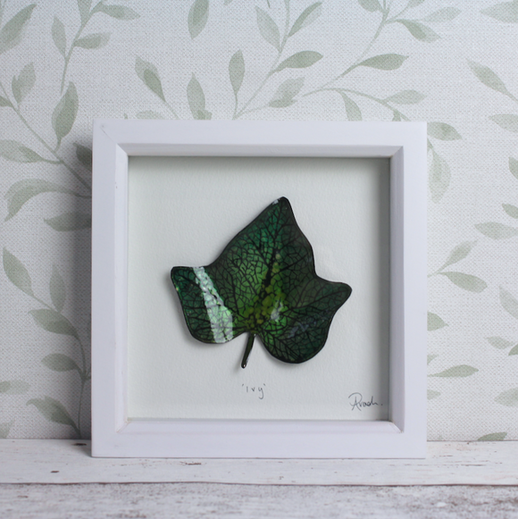 Ivy - Medium Frame