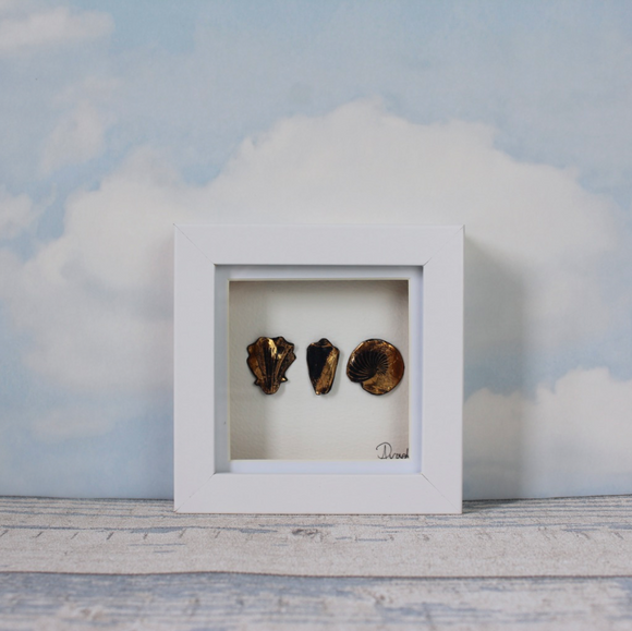 Shell Trio - Mini Frame