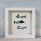 Swordfish Trio - Medium Frame