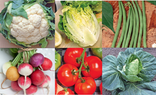 Load image into Gallery viewer, Seed Kit - Vegetables - UCSFresh