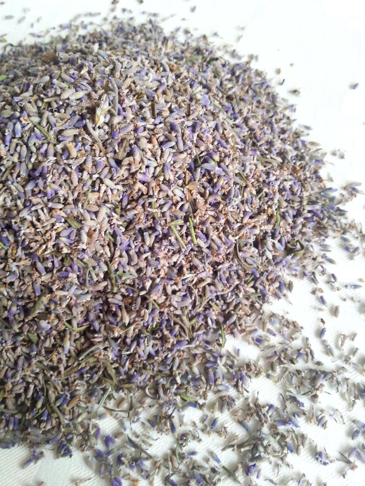 Bulk Dried Lavender Buds - 50 gr