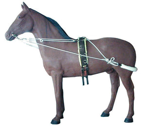 HorseMaster Training System