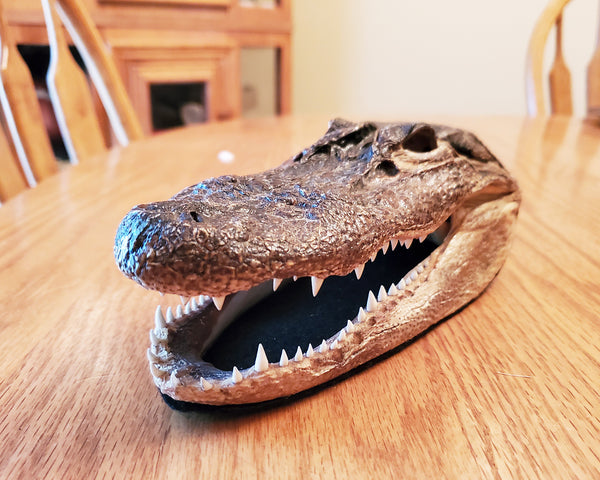 "Louisiana Alligator Taxidermy 7"" Alligator Head"