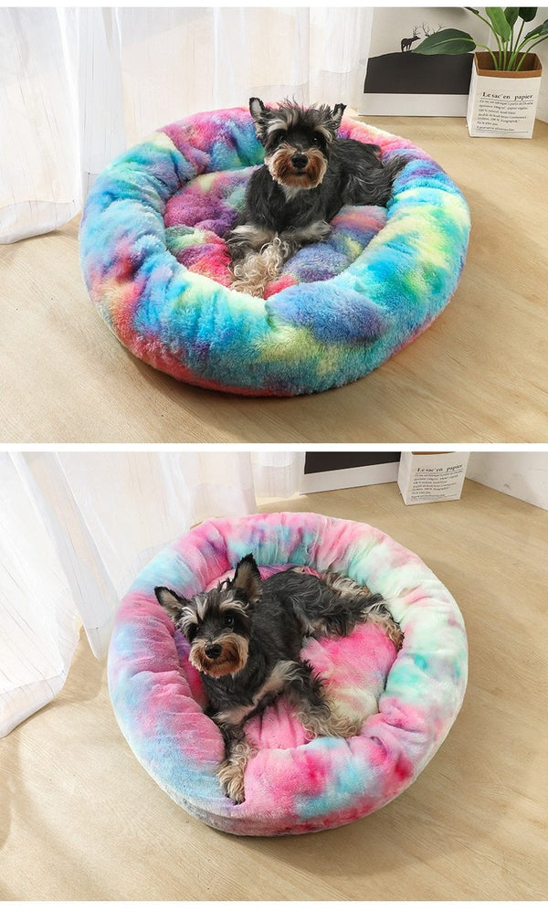 Soft Rainbow Dog Bed Colorful For Small Medium and Large Dog