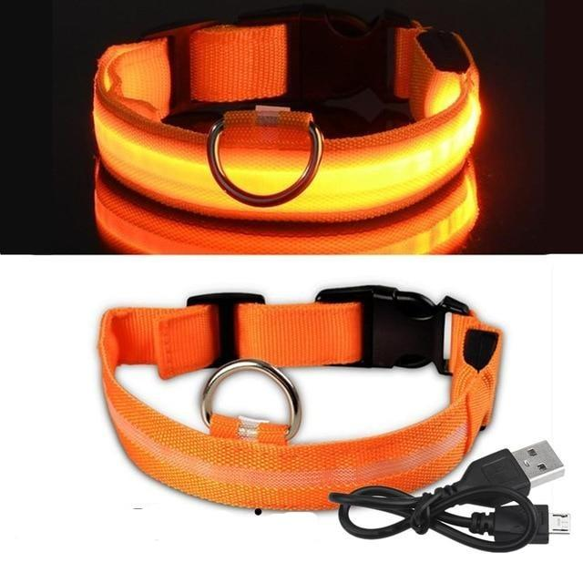 Glow LED Rechargeable Dog Collar