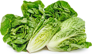 Organic Sweet Gem Lettuce, 2 Heads