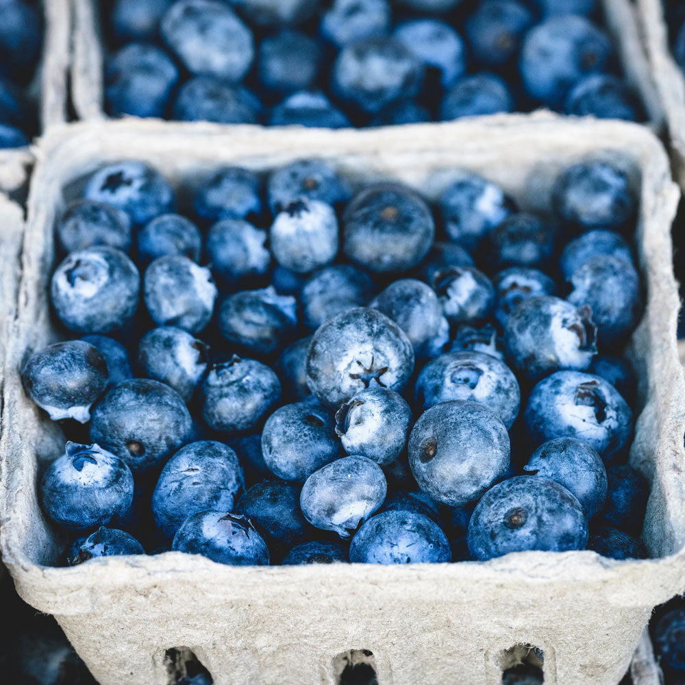 Pudwill Farm, Blueberries, Basket