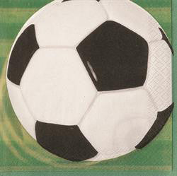 Printed Lunch Napkins 2Ply - Soccer Pk 16