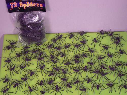 Spiders - Black Jumping Pk 72