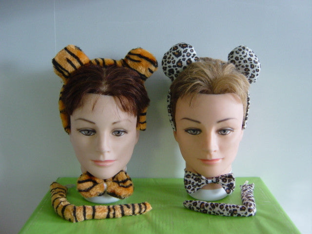 Big Cat Accessories Set
