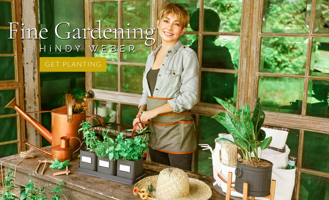 How to start a home garden at home by Hindy Weber,watering can philippines - Domesticity X Hindy weber
