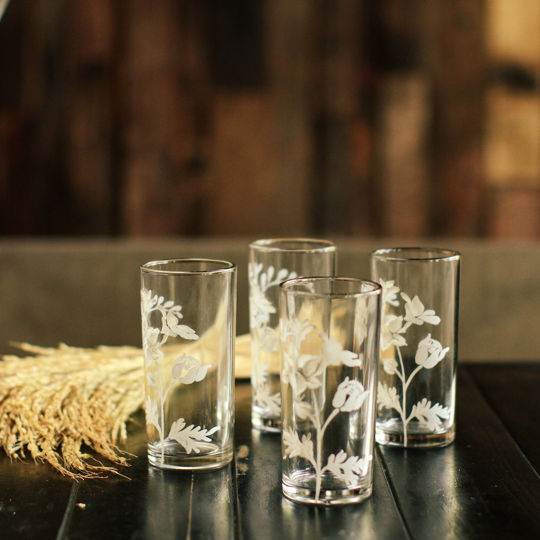 Isabelle Drinking Glass Set of 4