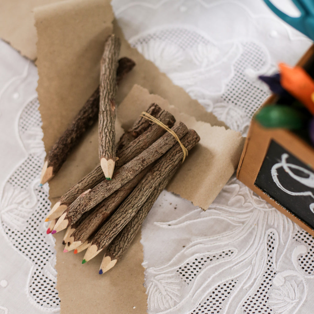 Rustic Twig Colored Pencils Set
