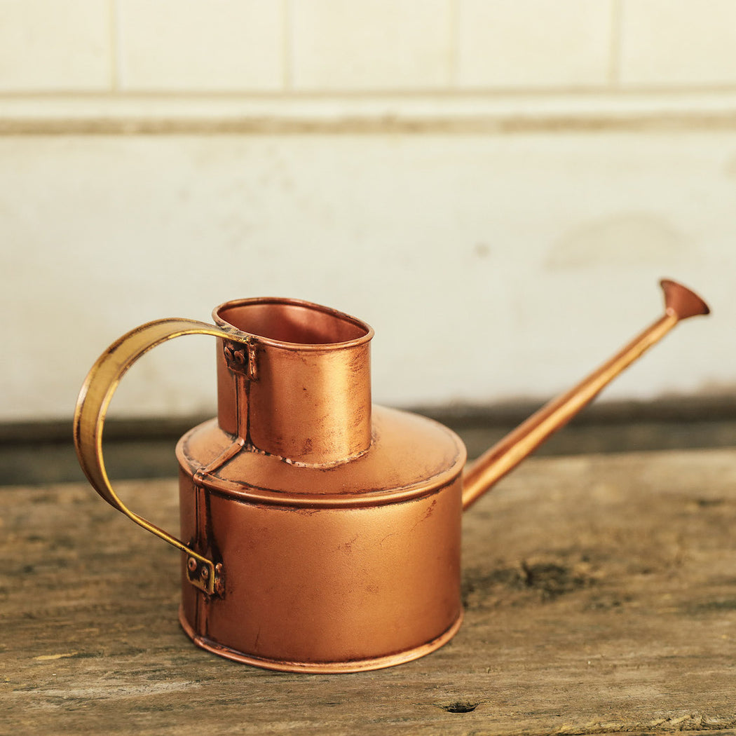 The Mollison Indoor Garden Watering Can ( Domesticity x Hindy Weber )