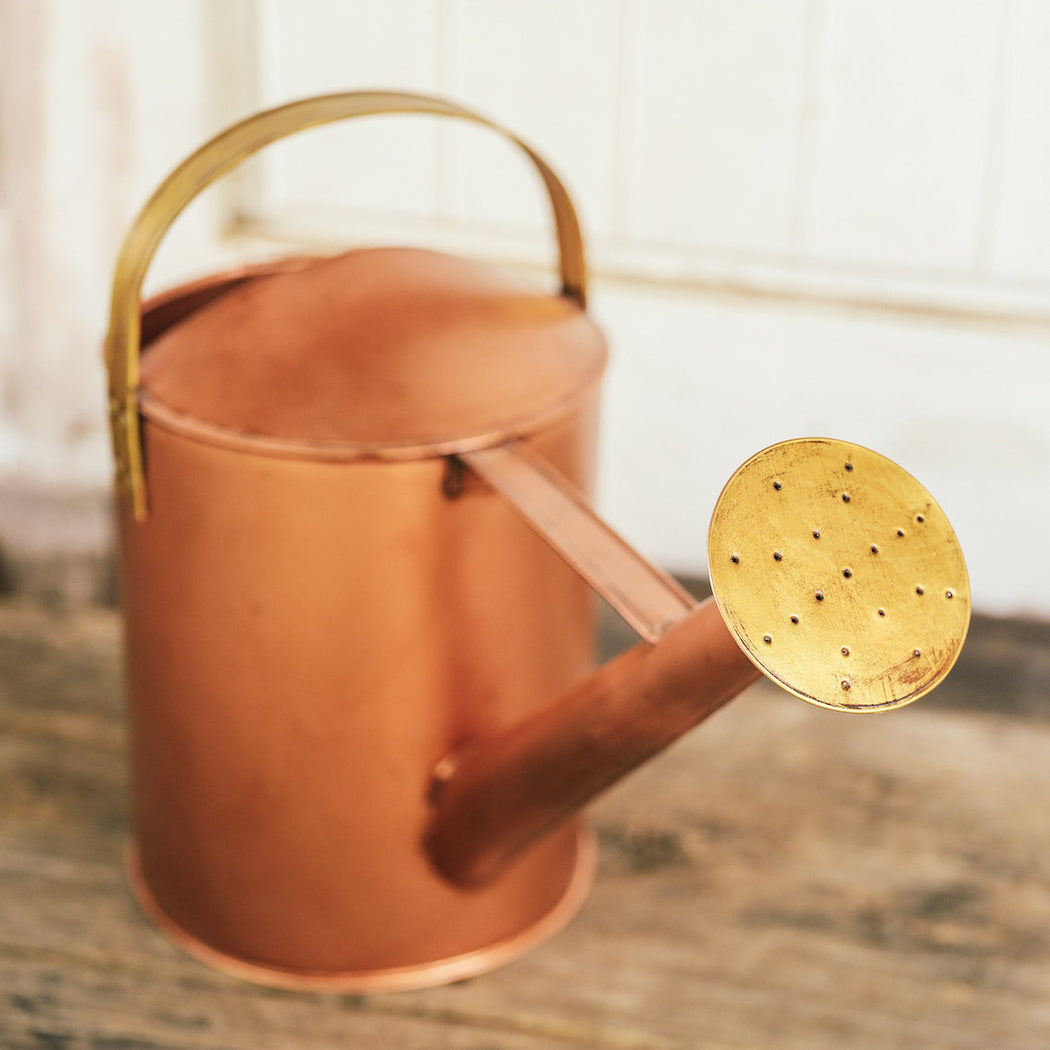 The Waldorf Garden Watering Can ( Domesticity X Hindy Weber )