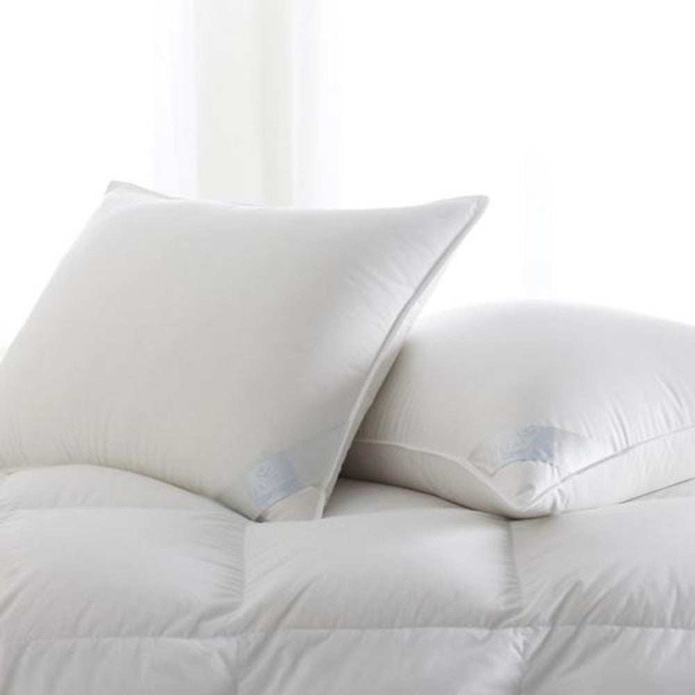Scandia Copenhagen European White Down Pillow
