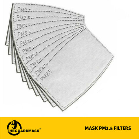 PM2.5 Filter for Reusable Mask