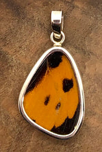 Load image into Gallery viewer, Butterfly Wing Pendant