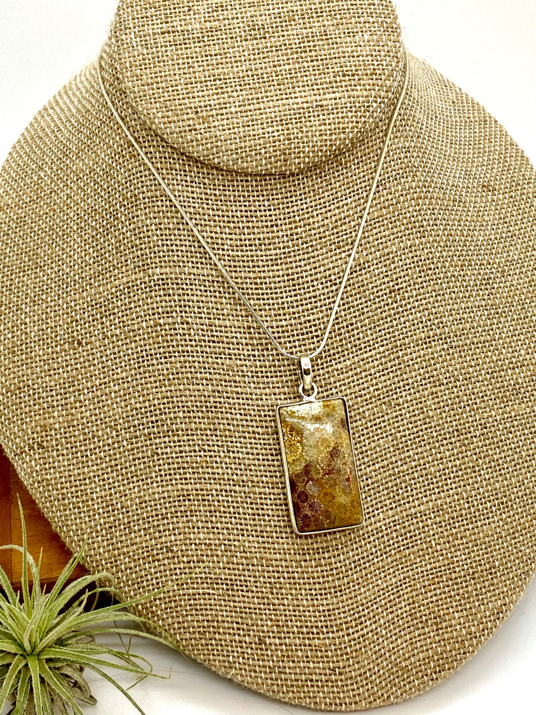 Unique Earth-Tone Coral Fossil Pendant