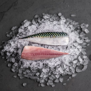 Mackerel Fillets