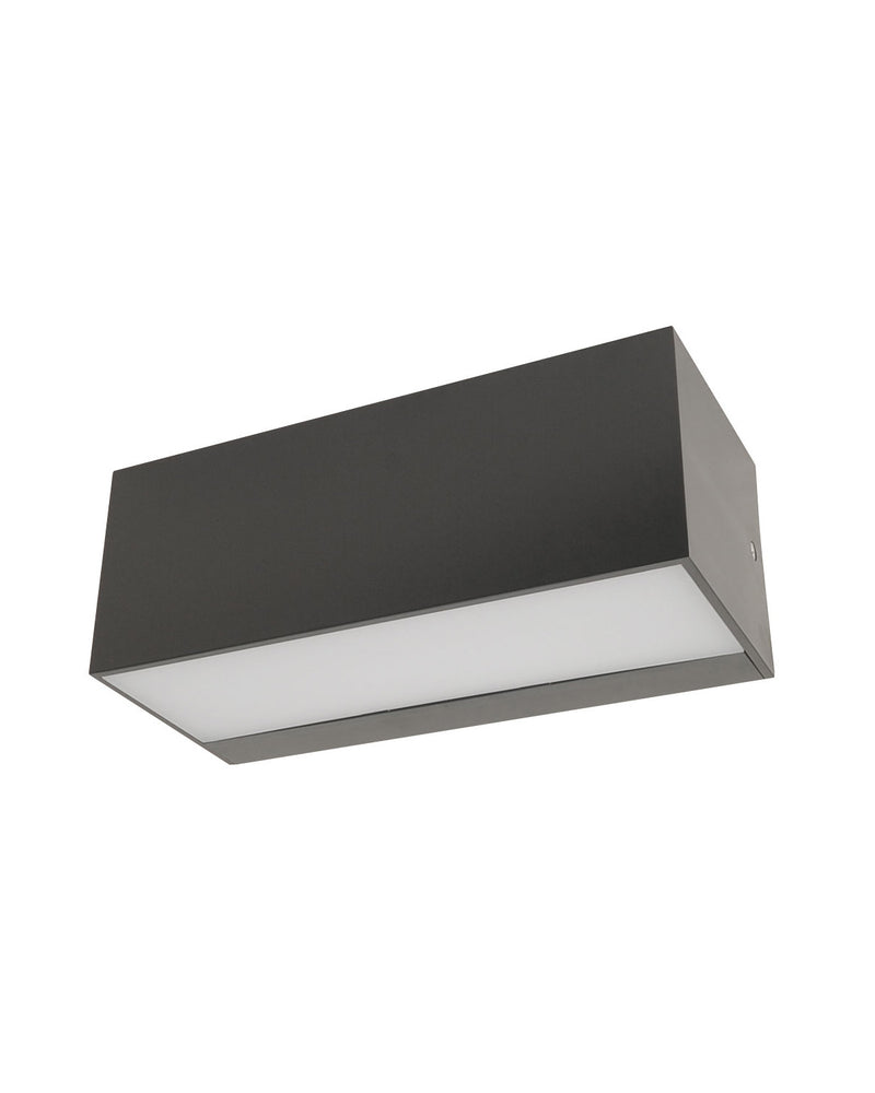 Orion Wall Light